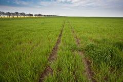 A estrada ao horizonte Fotografia de Stock Royalty Free