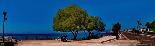 Estrada ao lado das árvores Imagem de Stock Royalty Free