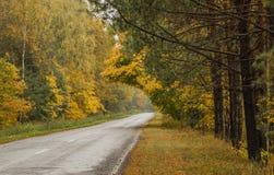 A estrada ao outono Imagens de Stock