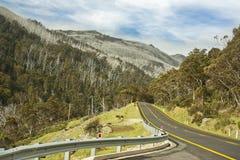Estrada ao parque nacional de Thredbo Kosciuszko Imagens de Stock Royalty Free