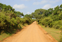 Estrada ao safari Imagens de Stock