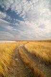 A estrada apagou-se ao horizonte. Fotografia de Stock Royalty Free