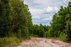 A estrada arenosa nas madeiras Imagem de Stock