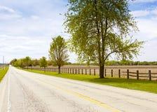 Estrada asfaltada Imagem de Stock