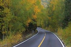 Estrada asfaltada Fotografia de Stock Royalty Free