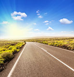 Estrada asfaltada ao sol Foto de Stock Royalty Free