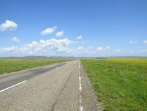 Estrada asfaltada através dos prados Fotos de Stock Royalty Free