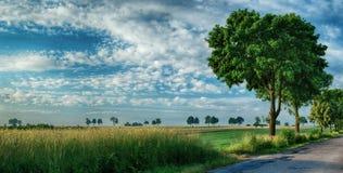 Estrada asfaltada, campos e céu 2 foto de stock royalty free