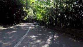 A estrada asfaltada de enrolamento passa com a cena da floresta Viagem do carro na estrada de enrolamento da montanha entre árvor vídeos de arquivo