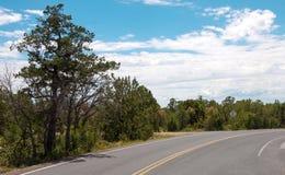 Estrada asfaltada em Grand Canyon Fotografia de Stock Royalty Free