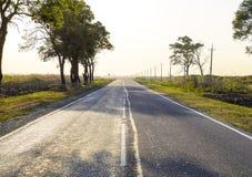 Estrada asfaltada entre árvores e campos Estradas do russo Fotografia de Stock