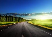 Estrada asfaltada na floresta imagens de stock