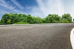 Estrada asfaltada na frente das madeiras verdes Fotografia de Stock