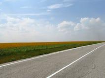 Estrada asfaltada nos campos Fotografia de Stock Royalty Free