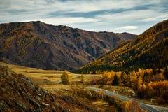 Estrada asfaltada ?s montanhas de Altai que passam com a paisagem do outono imagens de stock