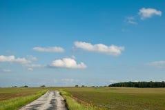 Estrada através da exploração agrícola Foto de Stock Royalty Free