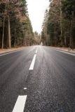 Estrada através da floresta do outono fotografia de stock royalty free
