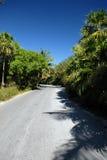 Estrada através da floresta tropical Fotos de Stock