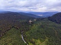 Estrada através da floresta verde, vista aérea fotos de stock royalty free