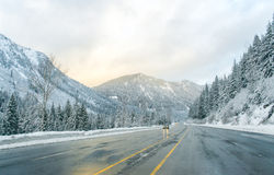 Estrada através da neve no inverno, Washington Imagem de Stock Royalty Free