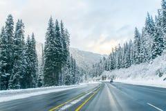 Estrada através da neve no inverno, Washington Fotos de Stock Royalty Free