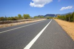Estrada através da paisagem não-urbana Fotos de Stock Royalty Free