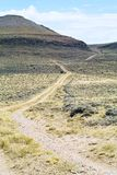 Estrada através da região selvagem foto de stock