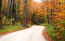 Estrada através das árvores do outono Imagem de Stock