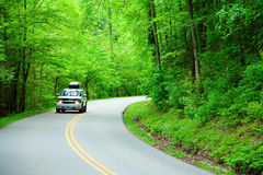 Estrada através das madeiras Fotos de Stock Royalty Free