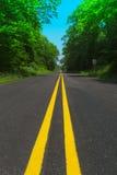 Estrada através das madeiras Imagens de Stock Royalty Free