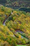 Estrada através das madeiras Imagem de Stock