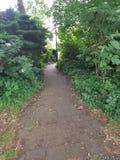 Estrada através das plantas e das árvores Foto de Stock Royalty Free