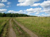 Estrada através de um prado Imagem de Stock
