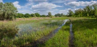Estrada através de um prado enchido com água Imagem de Stock Royalty Free