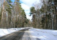 Estrada através de uma floresta Fotografia de Stock Royalty Free
