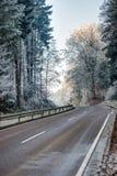 Estrada através de uma floresta com árvores geadas Foto de Stock