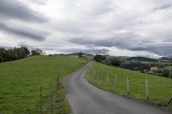 Estrada através do arbusto Fotografia de Stock Royalty Free