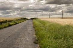 Estrada através do campo Imagem de Stock