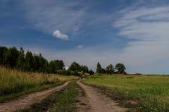 Estrada através do campo ao longo do timelapse das madeiras filme