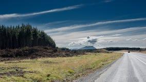 Estrada através do campo em Nova Zelândia Fotos de Stock Royalty Free