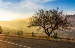 Estrada através do campo montanhoso no nascer do sol imagem de stock royalty free