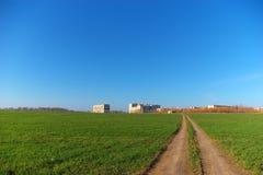 Estrada através do campo verde Fotografia de Stock Royalty Free