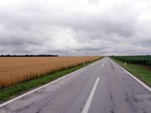 Estrada através dos campos de trigo 2 Imagens de Stock Royalty Free