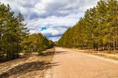 Estrada atrav?s da floresta, uma viagem na natureza imagem de stock
