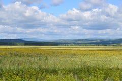 Estrada Bashkir através dos montes de Ural e dos campos dos prados Fotografia de Stock
