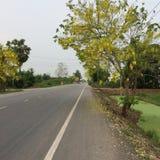 Estrada bonita Foto de Stock