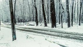 Estrada bonita coberta com a neve Foto de Stock