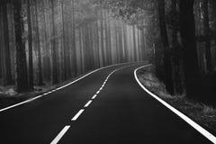 Estrada bonita da montanha em Tenerife Conceito do curso da estrada Aventura do curso de carro Imagem de Stock