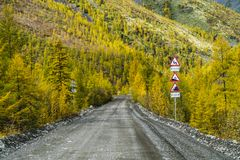 Estrada bonita na floresta, outono, R?ssia foto de stock