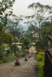Estrada branca do stupa sob o pico do ` s de Adam em Sri Lanka Imagens de Stock